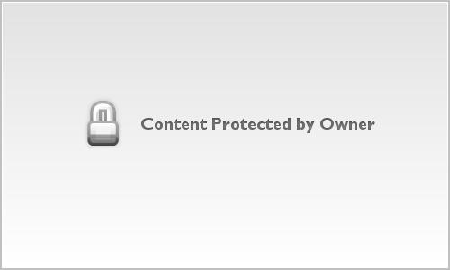 Frog photo, amphibian fine art, bokeh, wall decor
